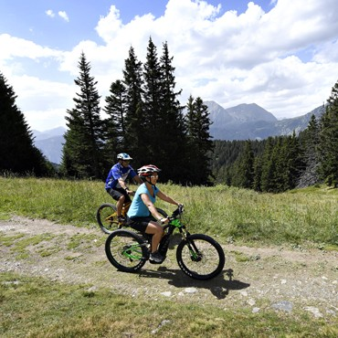 VTTAE et VTT cross-country