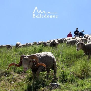 GR®738 - Haute traversée de Belledonne - Chamrousse