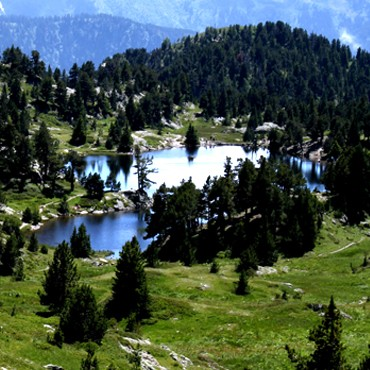 Natura 2000 area