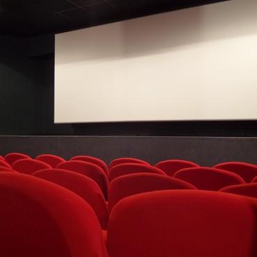 Cinema programme