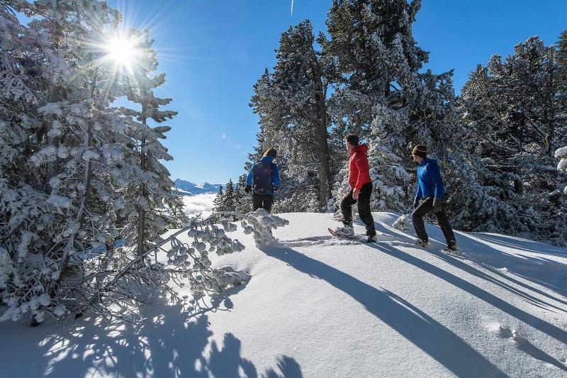 Snowshoe & Hike