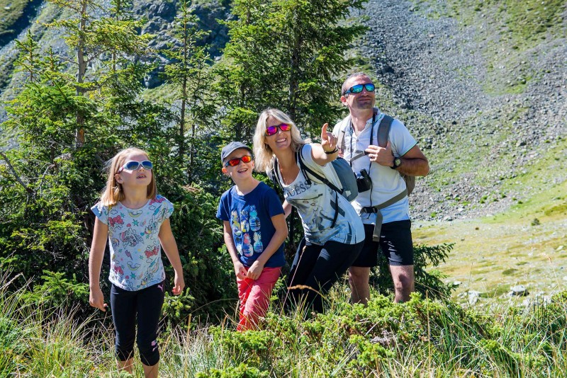 Family hikes and games