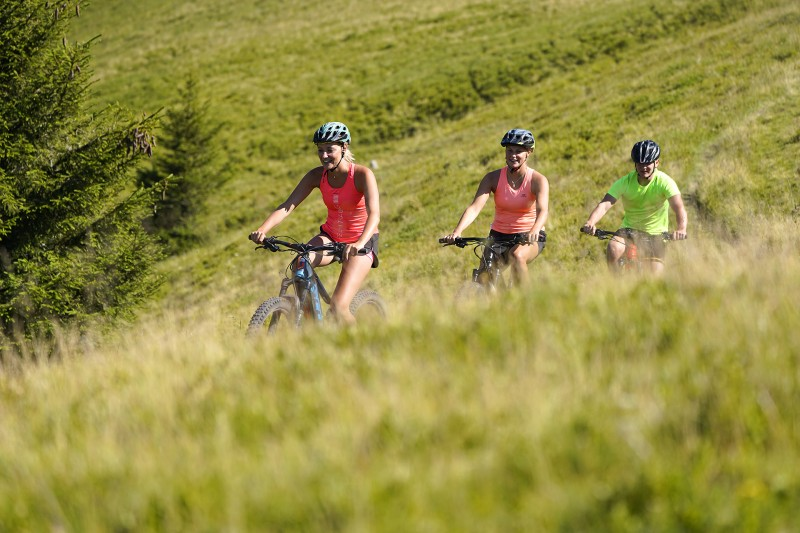 Mountain electric bike and cross-country bike