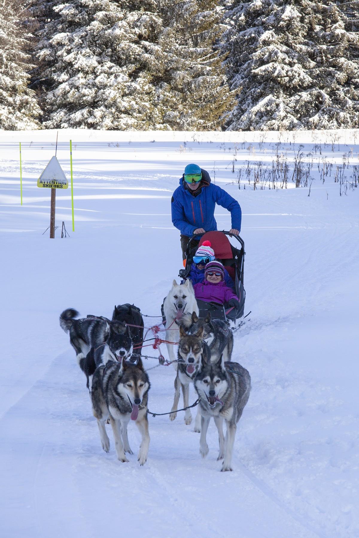 Chamrousse domaine nordique Chamrousse chiens de traîneaux - Nordic Park