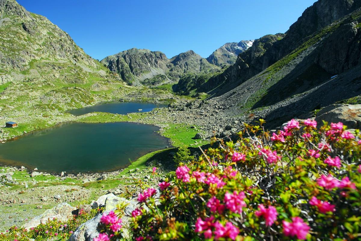 chamrousse-patrimoine-naturel-lacs-robert-station-montagne-ete-alpes-france-2443