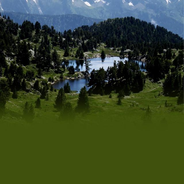Enquête Natura 2000 Chamrousse
