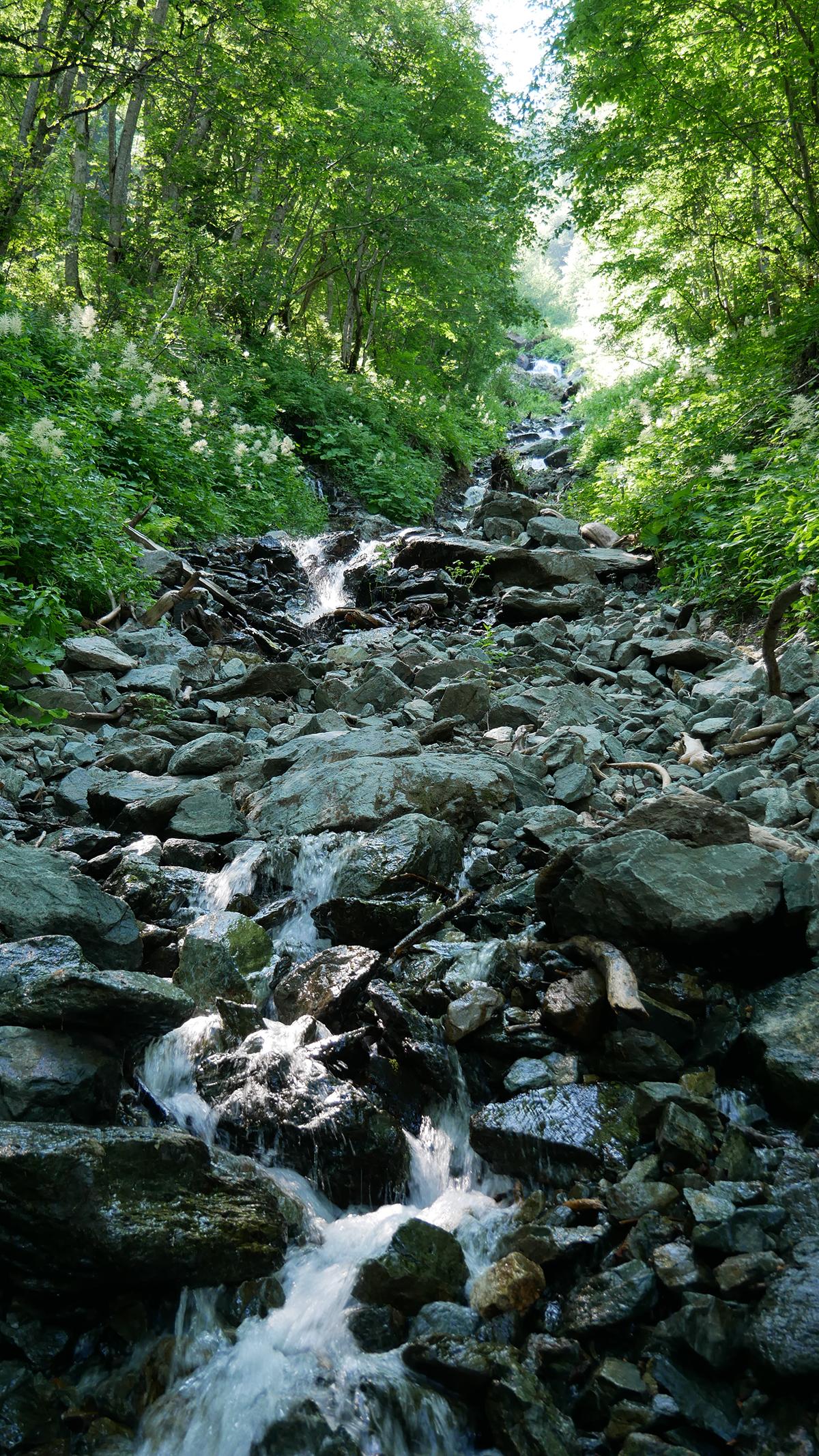Chamrousse ruisseau cascade Oursière station montagne été isère alpes france - © CP - OT Chamrousse