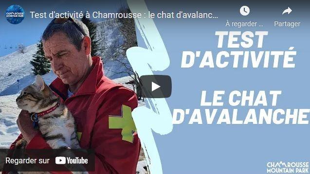 chamrousse vidéo chat avalanche 1er avril 2021 station montagne ski isère alpes france