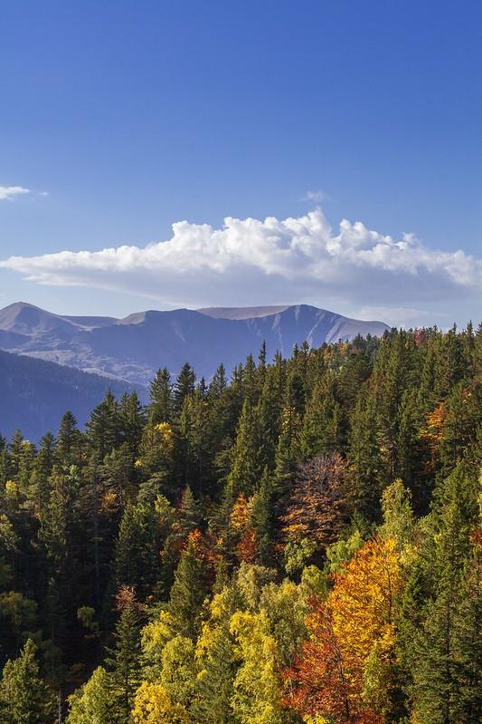 Chamrousse automne arbre couleur jaune orange plateau arselle station montagne grenoble isère alpes france