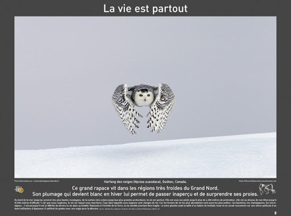 Photo exposition biodiversité