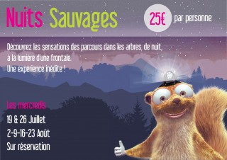 Nuits Sauvages