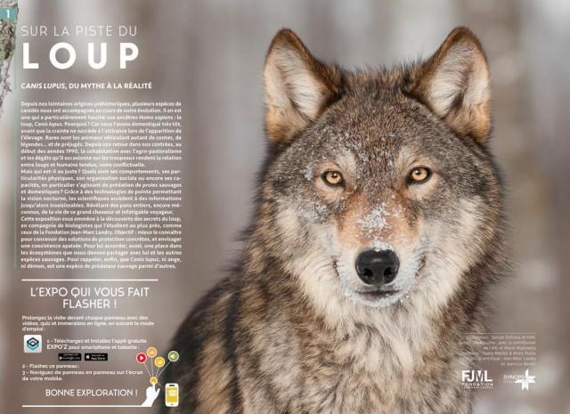 Photo de l'exposition sur la piste des loups Chamrousse
